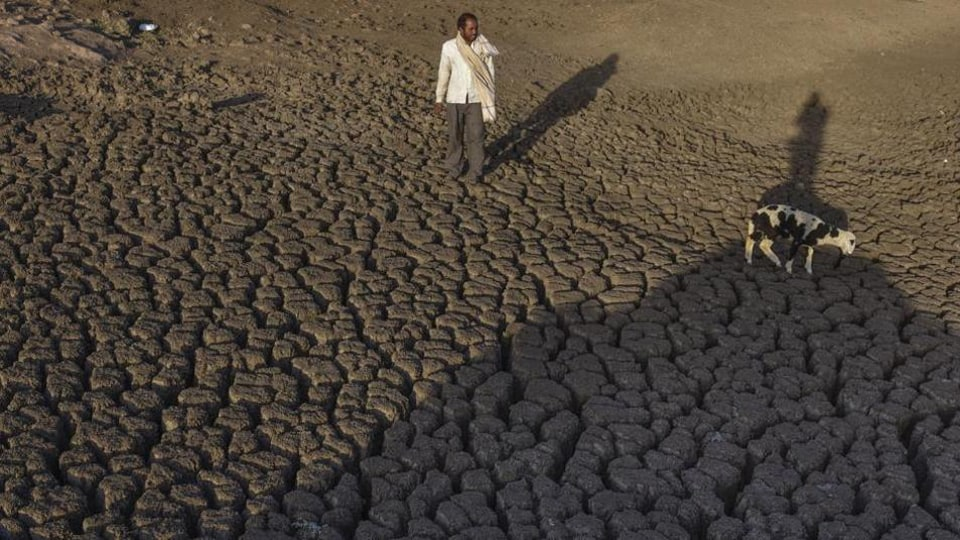 1,388 villages of 13 tehsils in Barmer, Jaisalmer, Jodhpur and Hanumangarh districts are drought-affected.