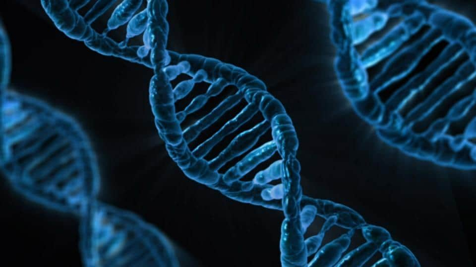 """According to the researchers, everyone inherits two copies of a taste gene called """"TAS2R38"""". People who inherit two copies of the variant called AVI aren't sensitive to bitter tastes from certain chemicals."""