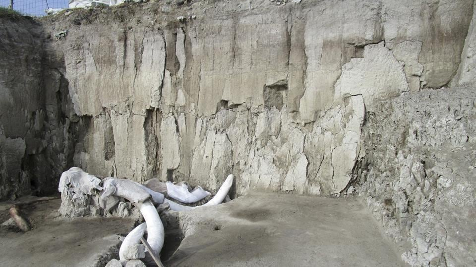 14,000-year-old mammoth traps built by humans found in Mexico. (Representational image)