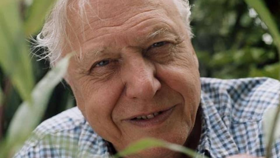 Sir David Attenborough will be conferred with the Indira Gandhi Prize for Peace, Disarmament and Development for 2019.