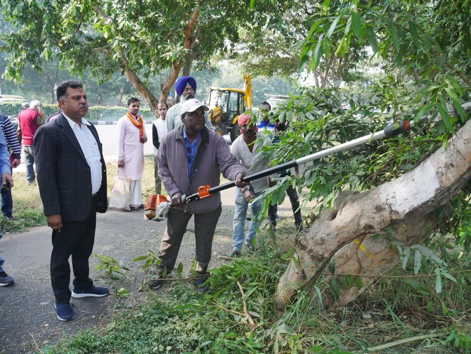 The UT forest department had approved the felling of 472 trees,