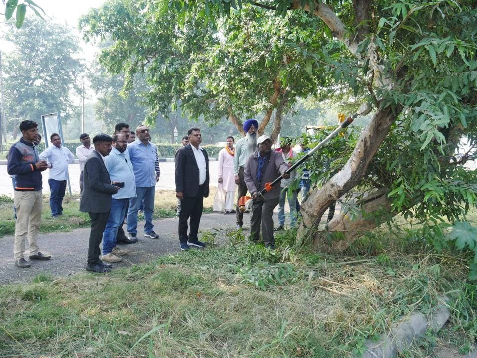 The UT engineering department had started the work to transplant 143 trees on November 19, a day before the Punjab and Haryana high court put a stay on the move on an NGO's petition.