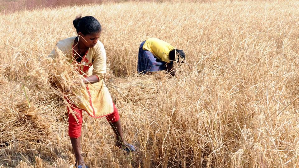 The Gujarat government on Saturday announced a financial package of Rs 3,795 crore for the farmers whose crop was damaged in unseasonal rains.
