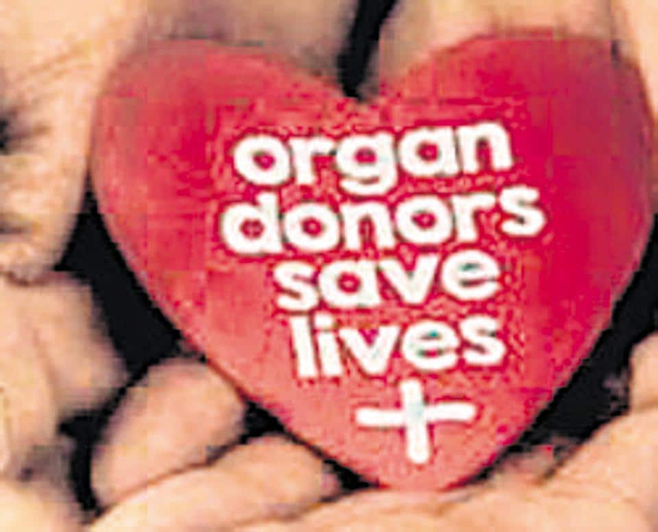 The city saw its second organ donation in the on-going lockdown period of the last two months when the family of a brain dead person agreed to donate organs. The liver, kidneys and cornea of the 36-year-old youth were retrieved.