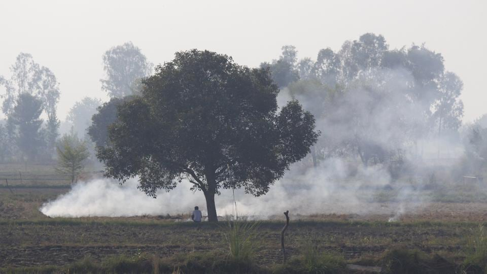 Fumes of smoke are seen due to stubble burning, as a farmer looks on, near Meham Sugar Mills in Rohtak, Haryana. (Yogendra Kumar / HT Photo)