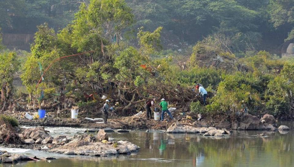 Residents and environmentalists clean the riverside at Salim Ali bird sanctuary to mark India rover day on November 30. There is an urgent need for residents to join in the effort to clean the city, including the riverside where garbage is being dumped regularly without any fear.