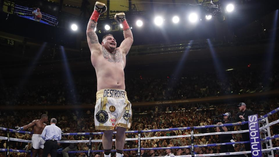 Mexican American Andy Ruiz celebrates after stopping Britain's Anthony Joshua.