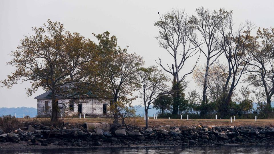 White stones mark burial sites at the Potter's field on Hart Island, in New York. Once completely off-limits, the islet has for over a century been run by the US prisons department, which heavily restricts access. Relatives are only allowed to visit on two designated days a month, while correctional officers escort media there just twice a year. (Don Emmert / AFP)