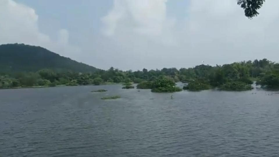 The lake is located inside Chennai's Arignar Anna Zoological Park.