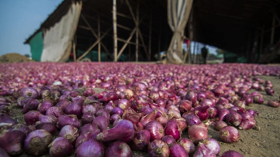 Onion prices have crossed the Rs 100 per kilogram mark in almost all markets in the country for the past several weeks, making it one of the major points of acrimony in the country's political discourse.