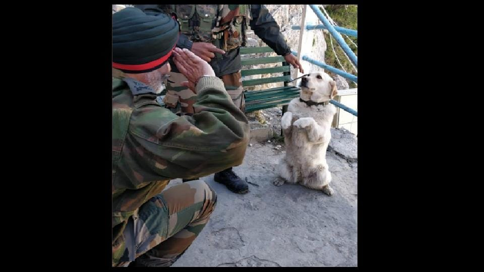 The picture shows Lieutenant General KJS Dhillon bending down on both knees saluting a dog on RVC Day.