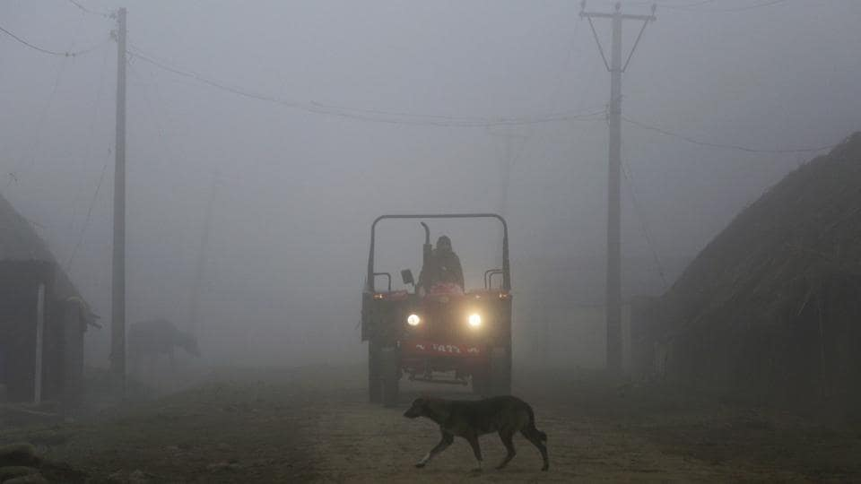 An Indian farmer rides a tractor through a dense fog on the outskirts of Jammu.