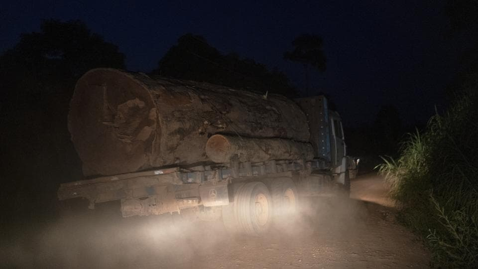 A logging truck without license plates carries the trunk of a giant tree on a dirt road away from Trairao National Forest in Trairao, Para state, Brazil. Night after night, truckers chug along the darkened road to their turn-off into the woods, where they deliver their cargo. By morning, the logs are laid out for hewing at the remote sawmill, its corrugated metal roof hardly visible from the highway. (Leo Correa / AP)