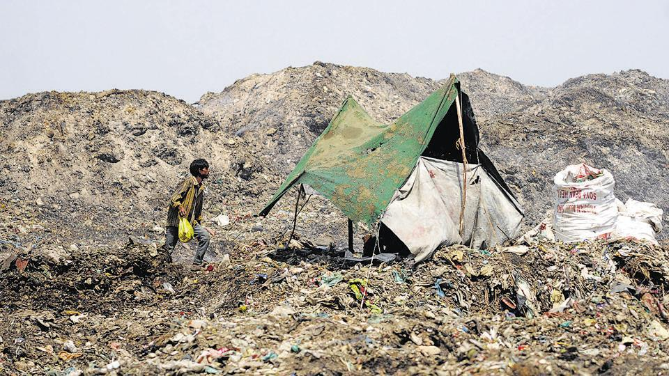 Over 2.5 lakh tonne of untreated waste is lying dumped at Shivri, Lucknow, for the past few months.