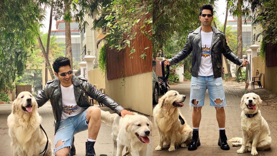 Varun Dhawan poses with dogs.