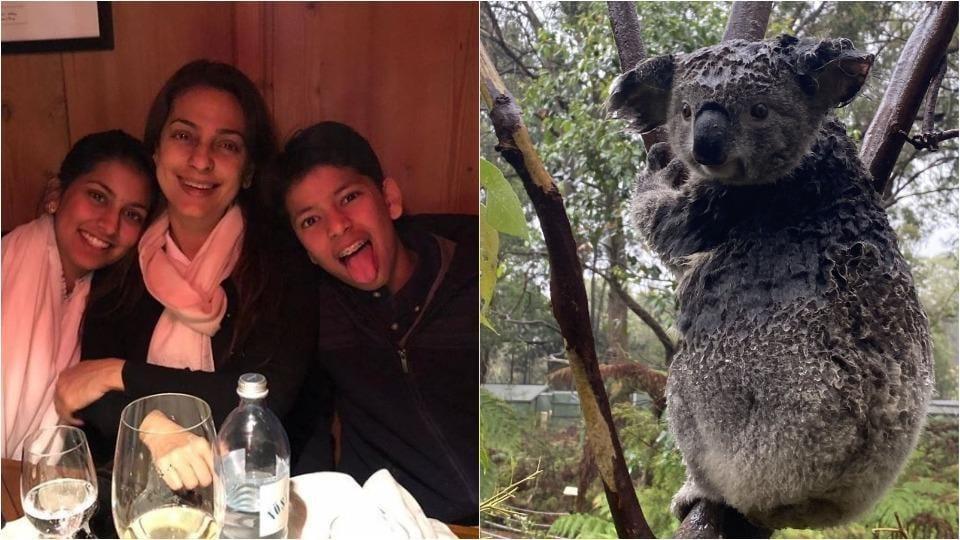 Juhi Chawla's son donates Rs 28,000 from pocket money to Australian bushfire relief - bollywood - Hindustan Times