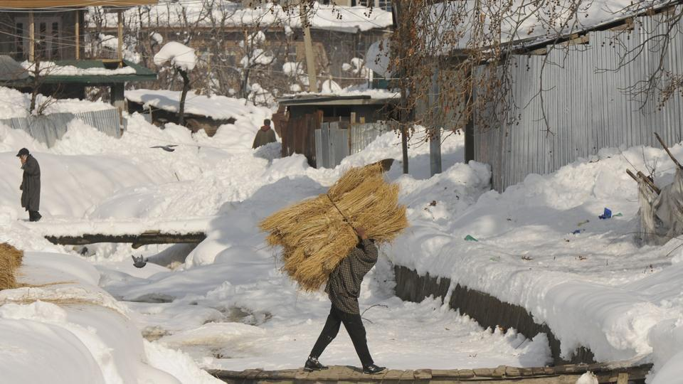A man carries hay on his back as he walks on a wooden bridge in Shopian, South Kashmir.