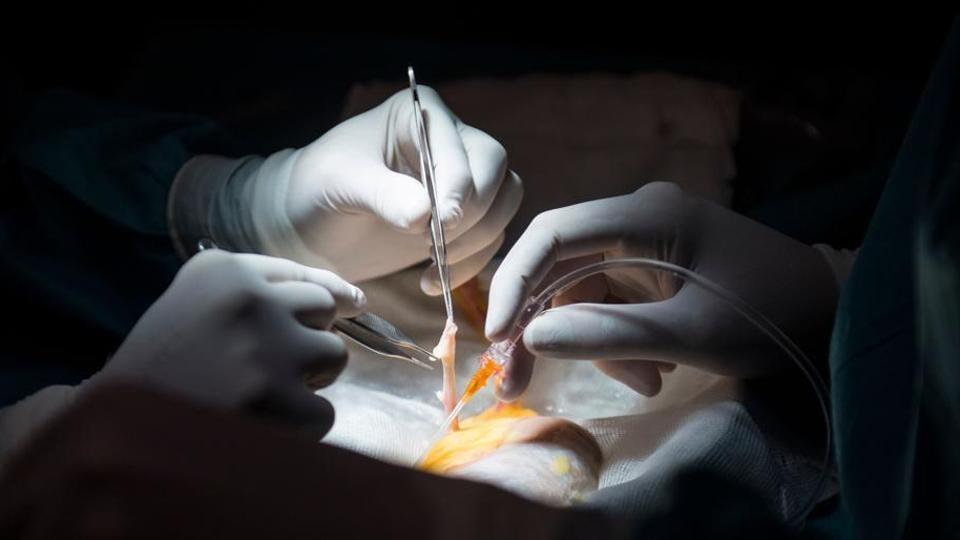 Pen cap removed from lungs, 12-year-old Kolkata boy gets new life - kolkata - Hindustan Times