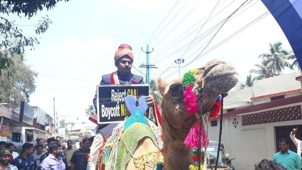 The groom arriving on camel.