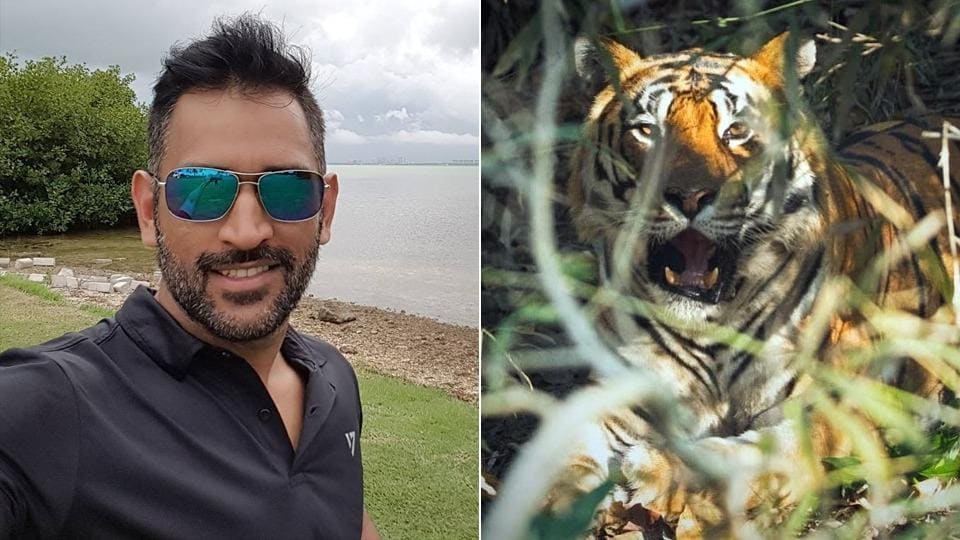 Mahendra Singh Dhoni's post has gathered tons of reactions.
