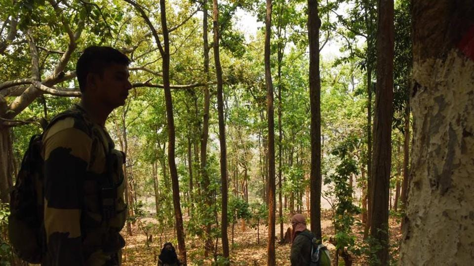 Security personnel keeping a vigil in Phulbani area of Odisha. A Maoist was gunned down on Monday in encounter with security forces in Maharashtra's Gadchiroli.