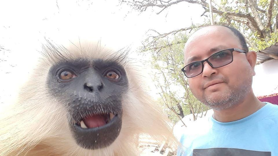 Gobinda, the last golden langur of Umananda, sharing the frame in March 2019 with award-winning photographer from Assam Anupam Nath.