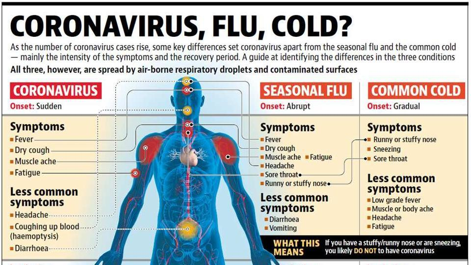 The key differences between the coronavirus, common cold and flu.
