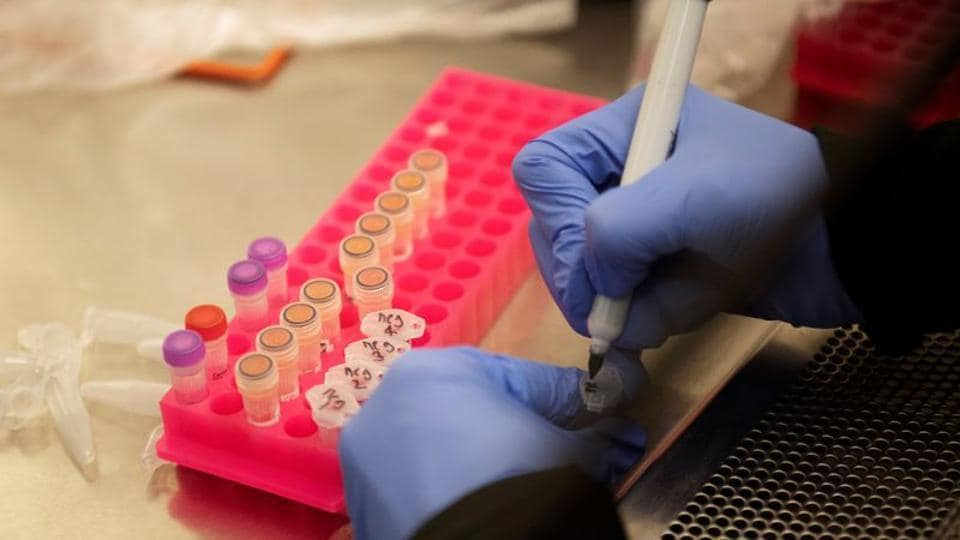 Researchers at the Microbiology Research Facility work with coronavirus samples as a trial begins to see whether malaria treatment hydroxychloroquine can prevent or reduce the severity of the coronavirus disease (COVID-19), at the University of Minnesota in Minneapolis, Minnesota, US.