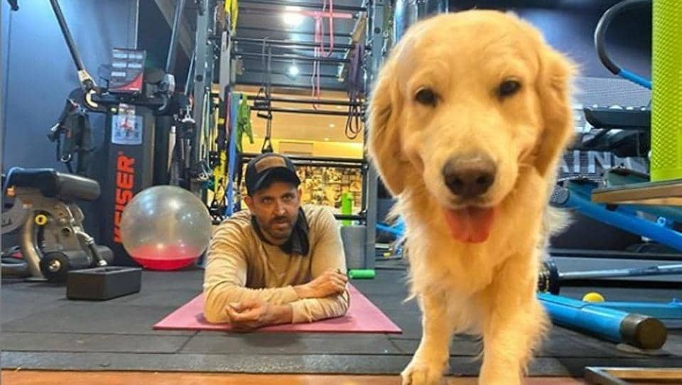 Hrithik Roshan working out in the gym.