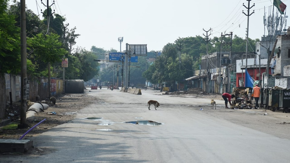 A deserted road in Varanasi during the day-long complete shut down in the city due to rise in Covid-19 cases,  April 29, 2020.