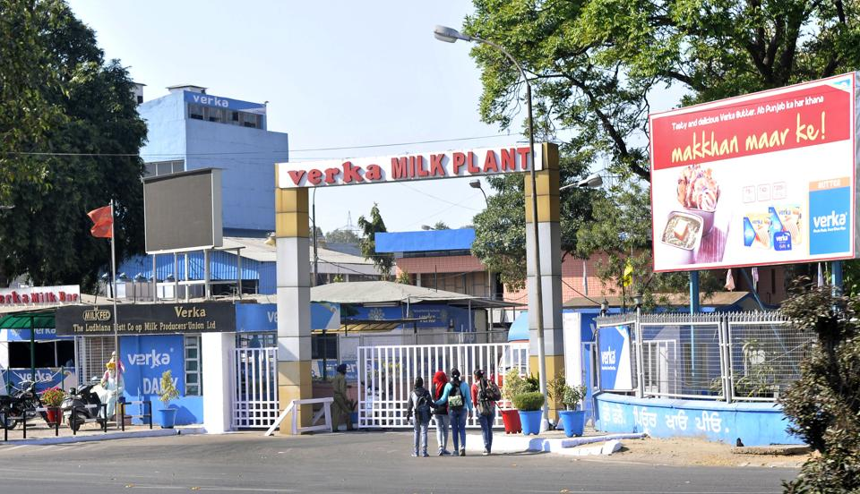 The LIP chief has accused the Verka milk plant authorities of looting dairy farmers and general public on purchase and sale of milk .