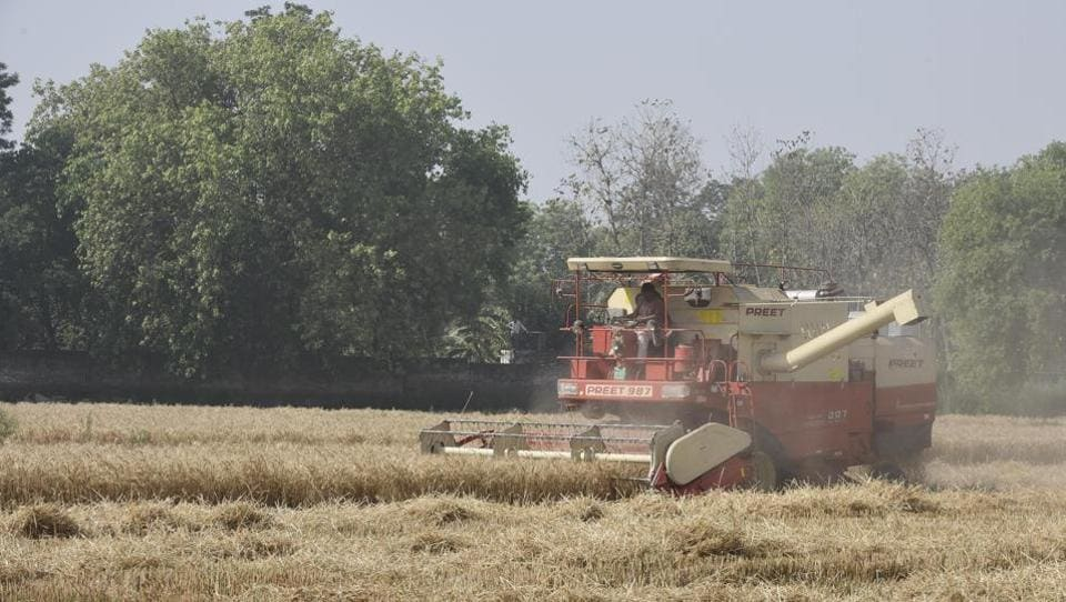 A combine harvester is seen at work in a wheat field, during lockdown, in Dhulsaras village, in New Delhi. As reported by the states, nearly 55-60% wheat crop has been harvested in Haryana so far after a delayed harvesting start this year amid the lockdown. (Vipin Kumar / HT Photo)