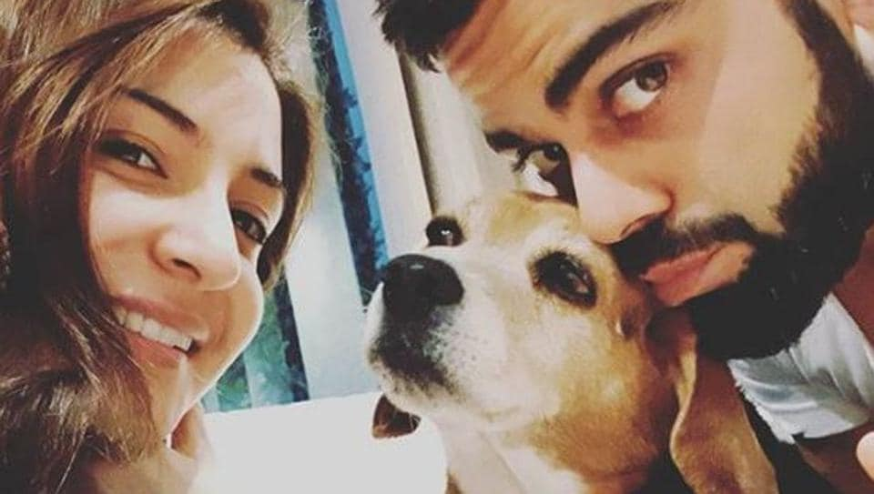 Anushka Sharma, Virat Kohli mourn death of pet dog Bruno: 'Graced our lives for 11 years but made connection of a lifetime' – bollywood