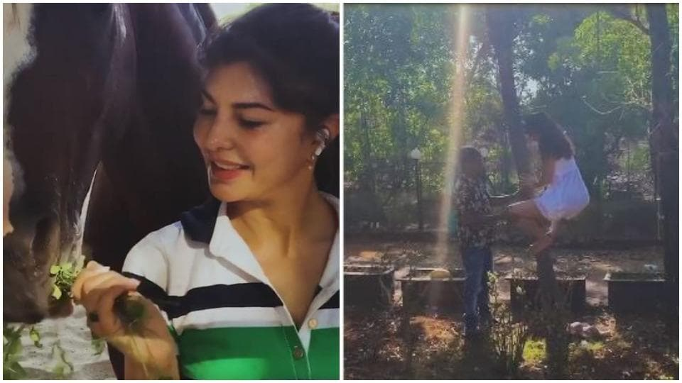 Jacqueline Fernandez is spending her time surrounded by animals.