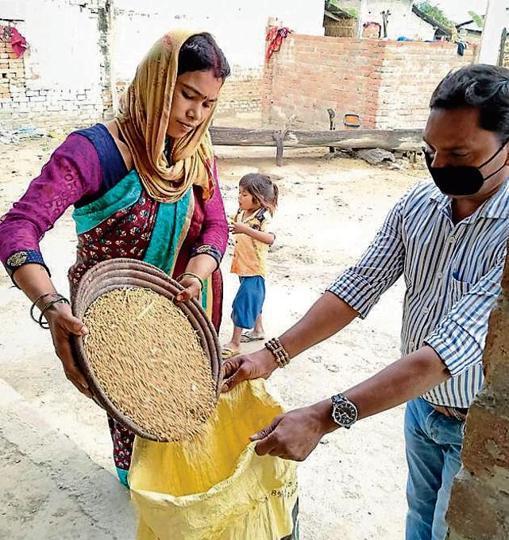 Grain collection for Anaj Bank in Bahraich a village.