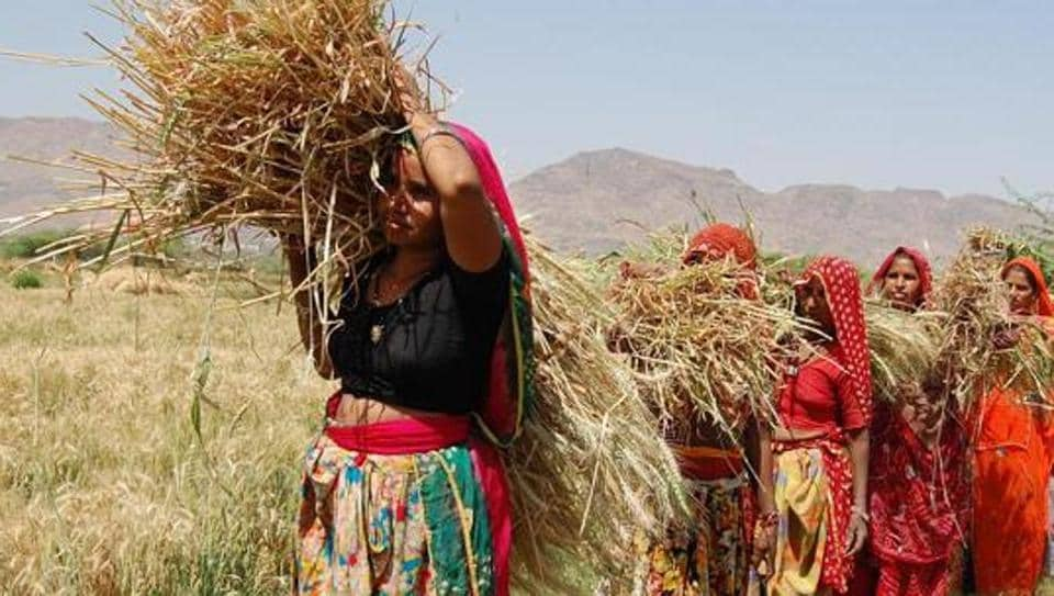 A key point that emerged during the NCW meeting was that while a significant number of Indian farmers are women, their access to credit facilities, subsidies and tools are limited.
