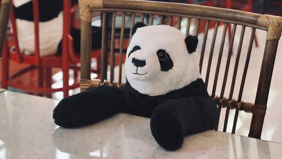 The image shows a 'panda' in the restaurant.