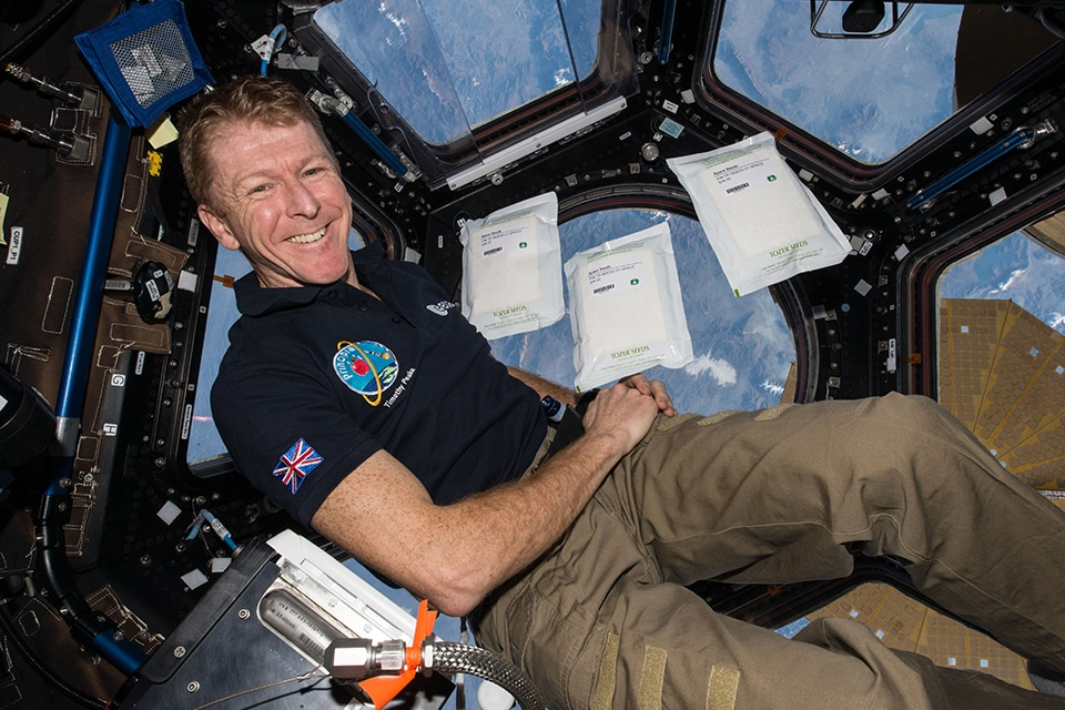 Two kg of rocket seeds were on board the ISS with British European Space Agency astronaut, Tim Peake, as part of his Principia mission.