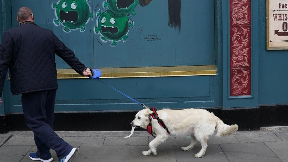 A man walks his dog past coronavirus artwork painted on the shuttered windows of a pub following the outbreak of the coronavirus disease in Dublin, Ireland.