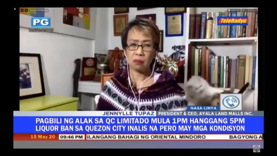 Philippines journalist Doris Bigornia tried to keep a straight face on live TV while her cats chose that very moment to showcase their fighting skills.
