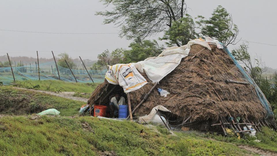 "A man takes shelter from the wind and rain inside a hut ahead at Bhadrak district, Odisha, on  May 20. ""Based on experiences during Cyclone Fani, all NDRF teams are equipped with tree cutters/pole cutters for post landfall restoration, if need arises. We have deployed at least 24 NDRF teams to begin restoration work,"" NDRF Director General SN Pradhan said.  (AP)"