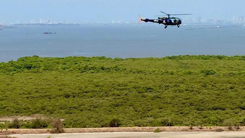 'Routine sortie': Navy on low-flying chopper over flamingo habitat in Mumbai