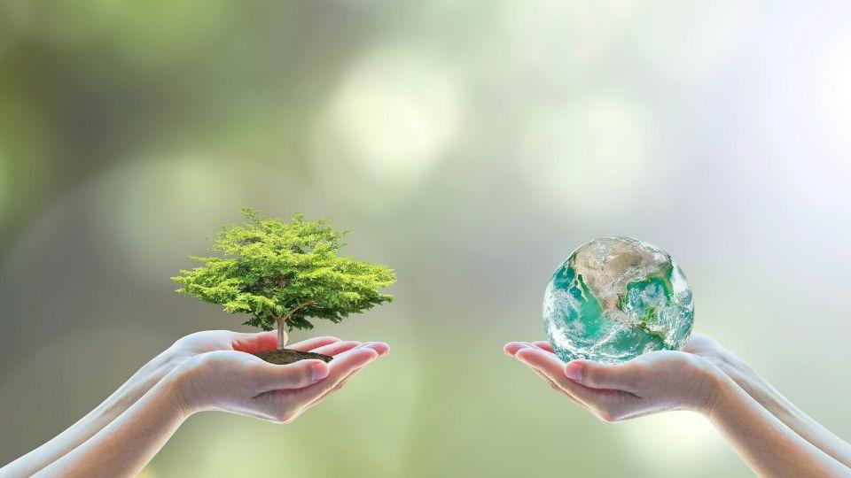 ESG (Environmental, Social and Governance) investing refers to a theme of investing that is also known as 'sustainable investing'.