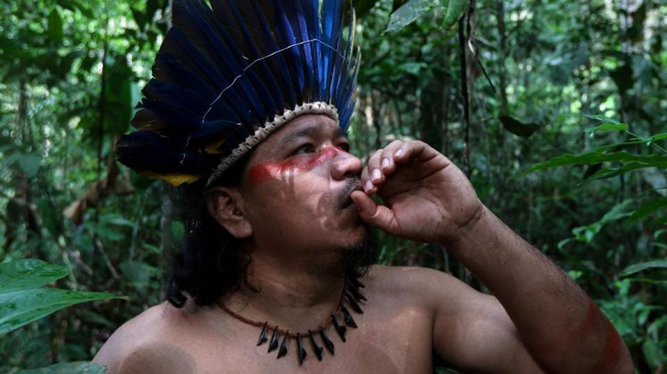 "Andre Satere looks out for medicinal herbs such as carapanauba, caferana and saratudo-- all native plants of the Amazon rainforest. ""We've been treating our symptoms with our own traditional remedies, the way our ancestors taught us,"" Andre Satere  told AFP. Villagers who suspect they have had the new coronavirus say the traditional remedies work. (Ricardo Oliveira / AFP)"