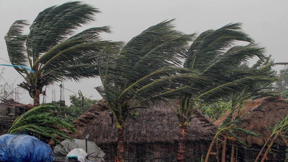 Trees sway as gusty winds induced by Cyclone Amphan hit near Dhamara Port in Odisha's Bhadrak district, on Wednesday.