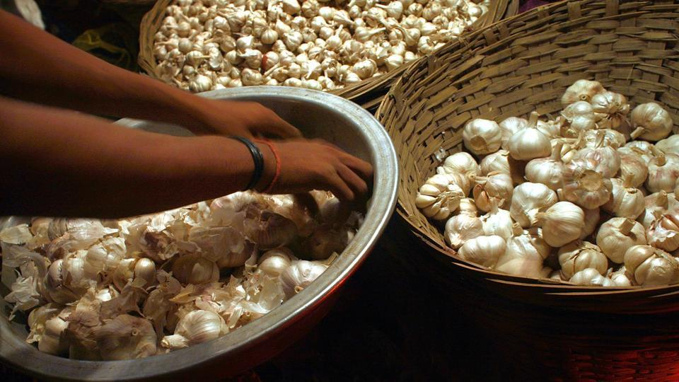 The MSAMB export data shows that from April 1 to May 19 this year, the total export of garlic stood at 1168 metric tonnes while it was 846 metric tonnes last year during the corresponding period.
