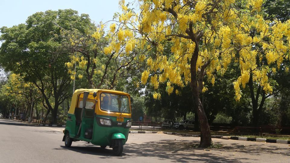 Auto-rickshaws have been allowed to ply after more than one-and-a-half months on the roads of Ambala City and Ambala Cantonment.