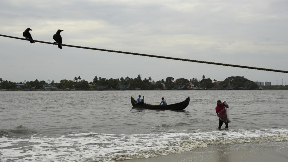 A fisherman brings in his catch from the Arabian Sea during the Coronavirus pandemic in Kochi, Kerala state.