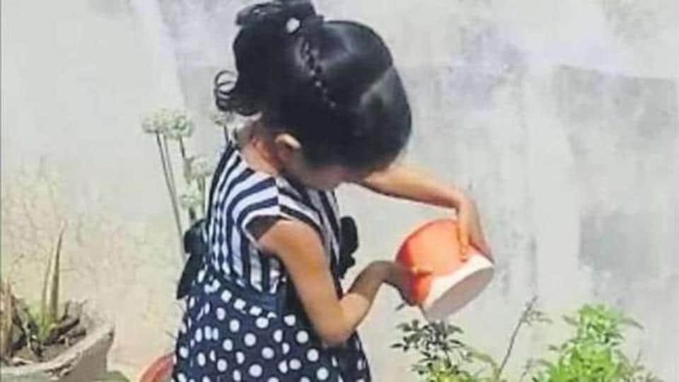 A pupil of Ram Lal Bhasin School, Ludhiana, watering plants.