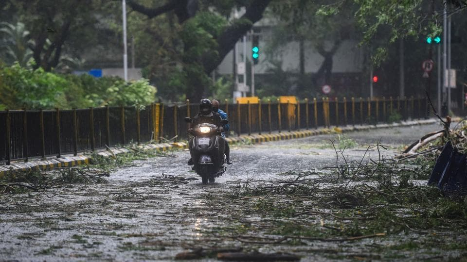 A scooterist moves on a road where a tree fell during rains and strong winds triggered by Cyclone Nisarga in Mumbai.